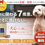 アジソン病の犬猫には食事も注意が必要!